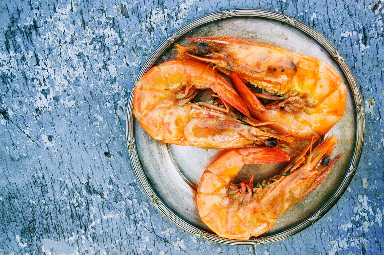 Seafood Cooking Experience during your Cottage Holiday in Wales