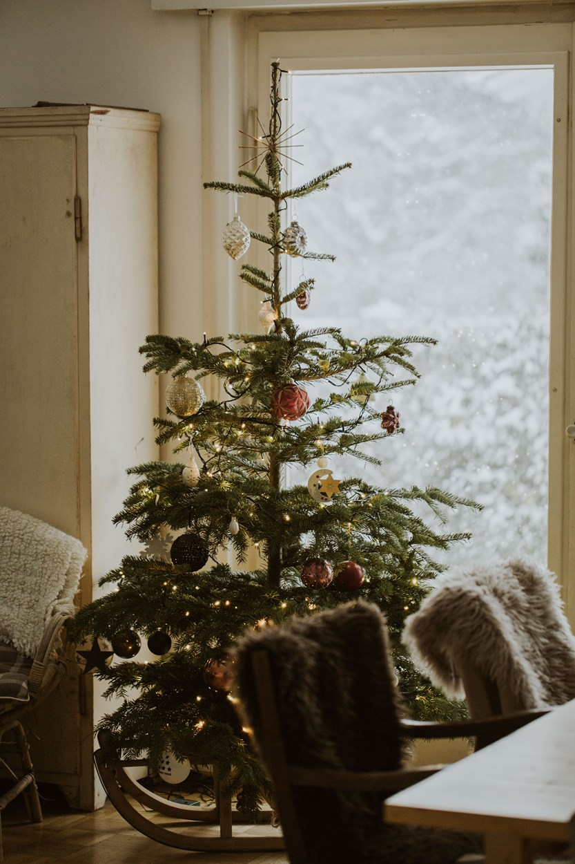 Christmas extras for your Wales Cottage Holiday