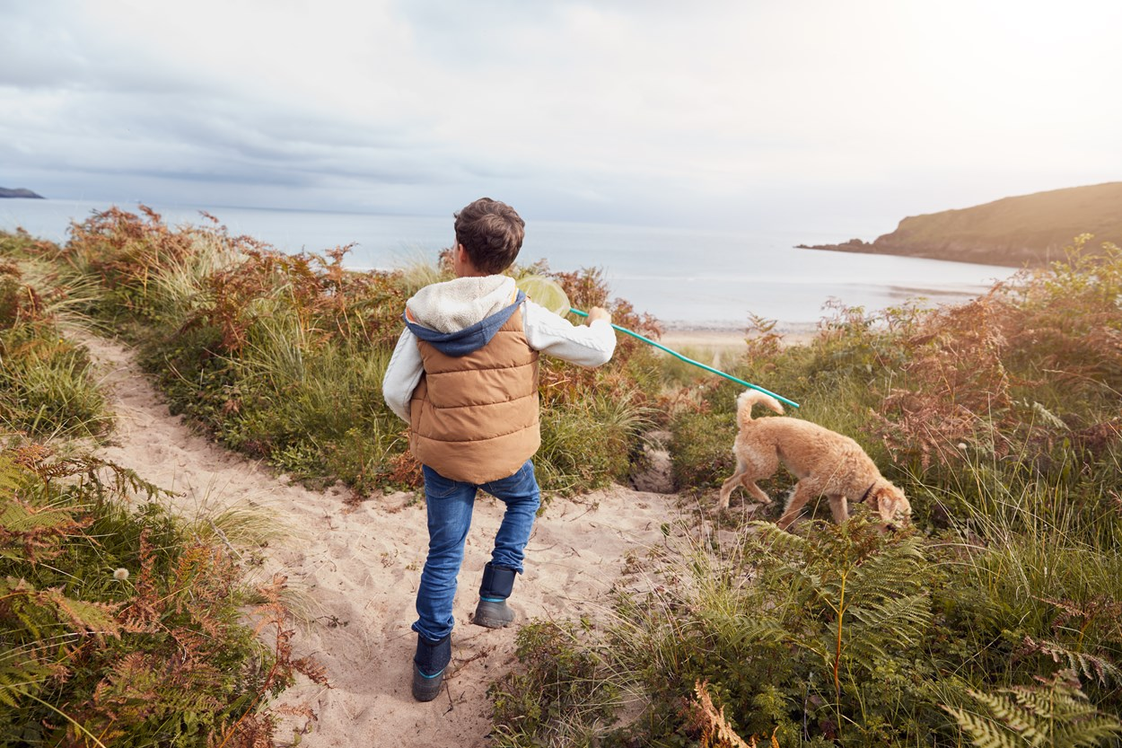 Dog Friendly Family Holidays in Wales